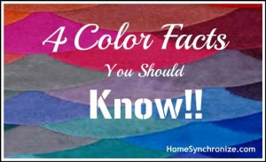4 Facts About Color That Everyone Should Know!